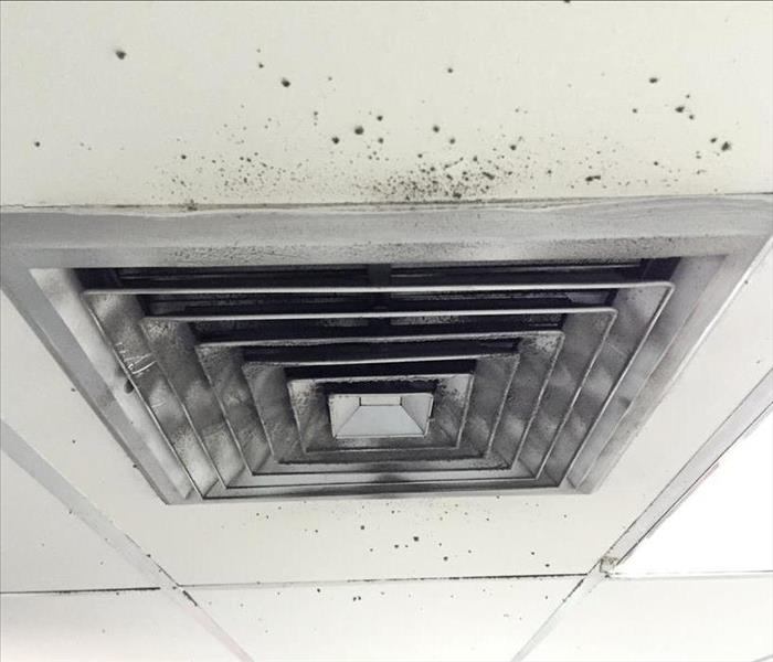 Why SERVPRO Do You Suspect Mold in the Air Ducts?