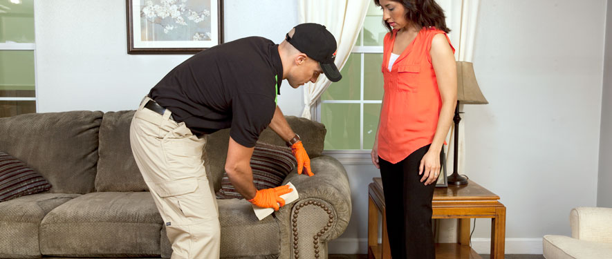 Fort Myers, FL carpet upholstery cleaning
